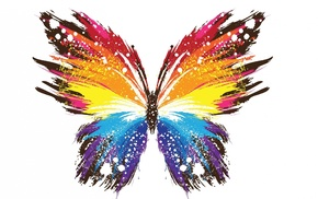 butterfly, white background, paint splatter, abstract