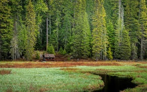 cabin, Oregon