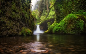 landscape, nature, forest, lake, waterfall