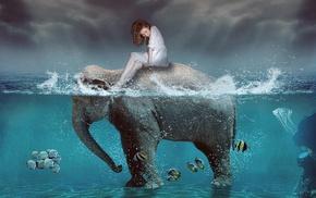 elephants, artwork, digital art, split view, fish
