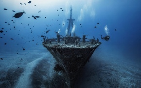 divers, fish, underwater, shipwreck