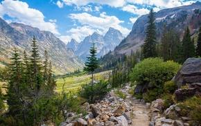 landscape, Wyoming, mountain, Lake Solitude, trees, nature