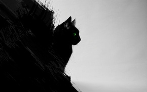 black cats, black, gray, cat, animals, digital art
