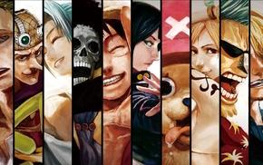 Roronoa Zoro, Usopp, Nico Robin, Nami, Brook, anime