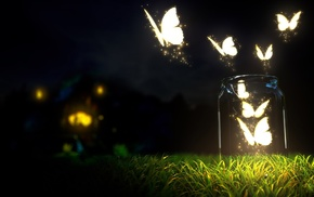 butterfly, lights