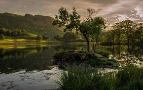 trees, rock, grass, landscape, reflection, lake