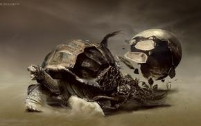 sand, roots, digital art, turtle, Desktopography, artwork