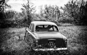 monochrome, car