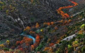 yellow, gorge, green, orange, trees, landscape