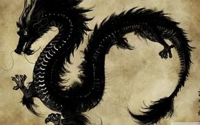 dragon, illustration, chinese dragon