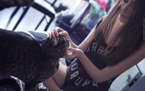 cat, girl, brunette, model, Fedor Shmidt, Turkish Van cats
