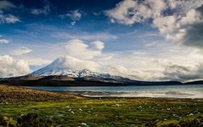 volcano, snowy peak, lake, nature, landscape, grass