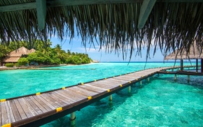 turquoise, Vacations, tropical, palm trees, resort, Maldives