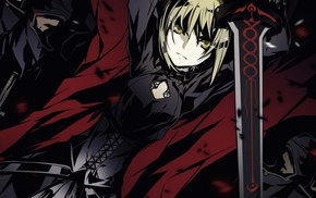 Saber Alter, Fate Series
