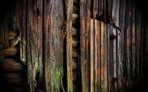 moss, wooden surface, planks, wood