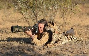 photographers, cheetah, camouflage, animals, nature