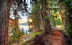 lake, hill, path, nature, forest, crater lake