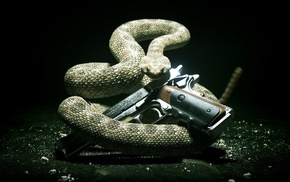 gun, snake, animals
