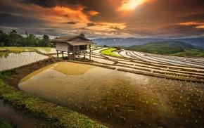 landscape, sunrise, hut, clouds, field, terraces