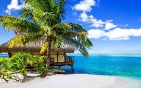 tropical, landscape, nature, palm trees, sea, Bora Bora