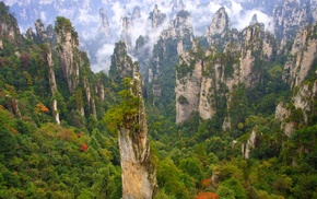 landscape, nature, trees, forest, limestone, cliff