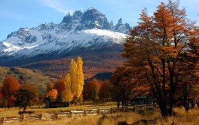 cottage, Patagonia, trees, orange, forest, Chile