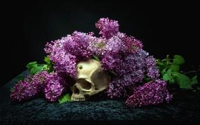 bones, flowers, skull