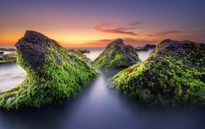 moss, sunset, long exposure, nature, stones, rock