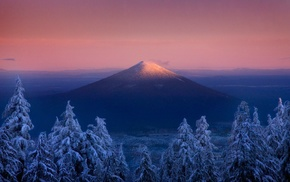 volcano, forest, trees, sunset, winter, mountain