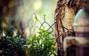 fence, sea, wood, macro, depth of field, bokeh