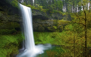 forest, long exposure, nature, landscape, trees, waterfall