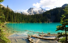 forest, Canada, British Columbia, landscape, turquoise, nature