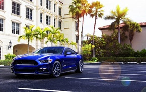 blue cars, Ford Mustang, car, palm trees