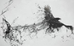 crow, ink