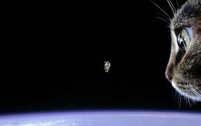 cat, Earth, floating, space, astronaut