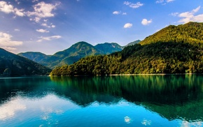 forest, summer, reflection, green, landscape, Italy