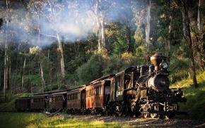 railway, train, sunlight, smoke, forest, Australia