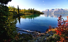 leaves, nature, lake, landscape, mountain, British Columbia