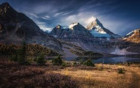 forest, fall, landscape, sunset, snowy peak, lake