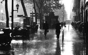 umbrella, noir, rain