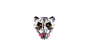 colorful, low poly, animals, white background, tiger, minimalism