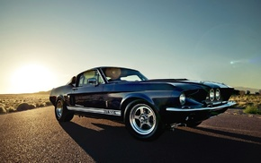 muscle cars, car, Shelby GT500