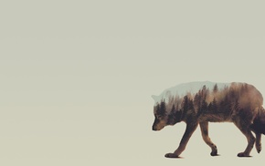 Andreas Lie, Double Exposure, animals