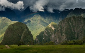 Andes, Peru, landscape, mountain, trees, nature