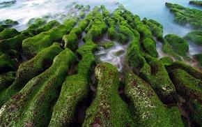long exposure, sea, landscape, algae, moss, green