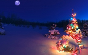 snow, christmas lights, Christmas Tree