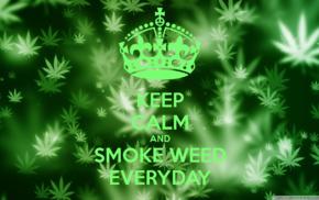 green, Keep Calm and...