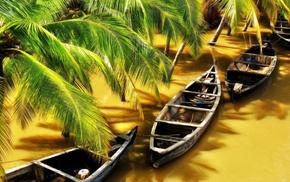 nature, India, sunlight, flood, shadow, wood