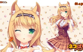 nekomimi, Neko Para, Maple character, anime girls, Sayori, Neko Works