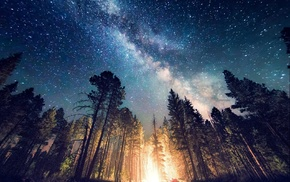 Milky Way, forest, starry night, camping, landscape, space